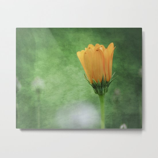 Painter's Brush Metal Print