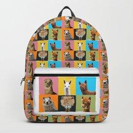 Llama Drama Backpack