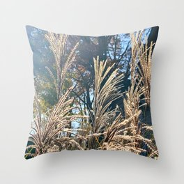 Chinese Silver Grass in the Sunlight - Photography Art Throw Pillow