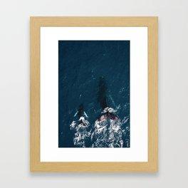 Ocean Family Whales Framed Art Print