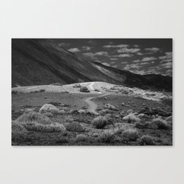 Road Takes Places Canvas Print