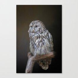 Lovely cute owl Canvas Print