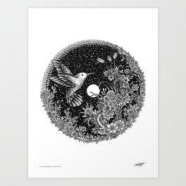 HUMMINGBIRD - MIDNIGHT STORY Art Print