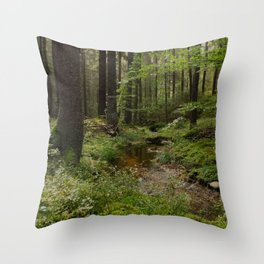 bäck Throw Pillow