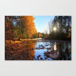 Salmon Sanctuary - Adams River BC, Canada Canvas Print