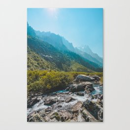 Cascade Creek, Grand Teton National Park Canvas Print