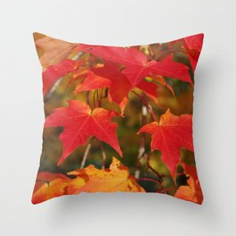 Fiery Autumn Maple Leaves 4966 Throw Pillow