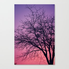 Purple Peach Sunset Canvas Print
