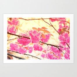 Pink Pushy Power Art Print