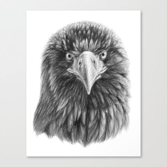 Eagle SK069 Canvas Print