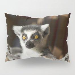 Lemur Catta Pillow Sham