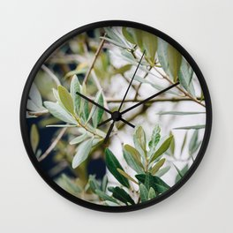 Photo of a Mediterranean Olive Tree, in Trastevere Rome, Italy | Fine Art Travel Photography |  Wall Clock