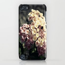 A Simple Gift iPhone Case