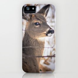 January Whitetail iPhone Case