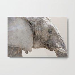 Elephant Portrait Photography   Wildlife   African-Wildlife   Animal Photography Metal Print