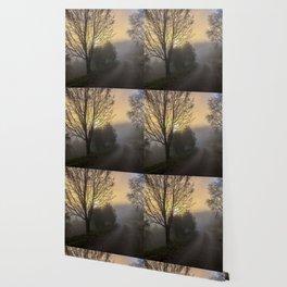 Foggy sunrise Wallpaper