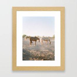 Relaxing at sunset Framed Art Print