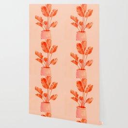 Coral Banana Plant Wallpaper