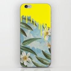 Tenaer iPhone & iPod Skin