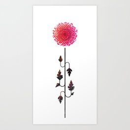 Flower of November - Chrysanthemum Art Print