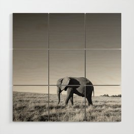 Lone female elephant walking along African savanna Wood Wall Art