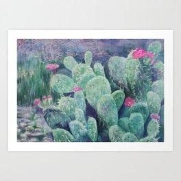 Cactus Blooms in the Southern California Desert Art Print