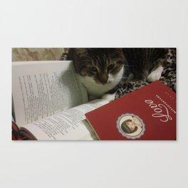 Caleb the cat Canvas Print