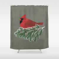 cardinal Shower Curtains featuring Cardinal by Sam Magee