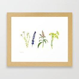Tea Flowers Framed Art Print
