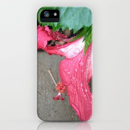 Pink Belle iPhone Case