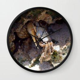 Crab No.3 Wall Clock