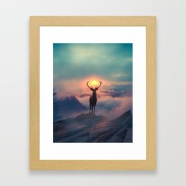 Morning glory Framed Art Print