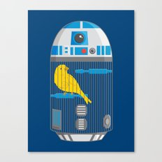 R2 Birdcage Canvas Print