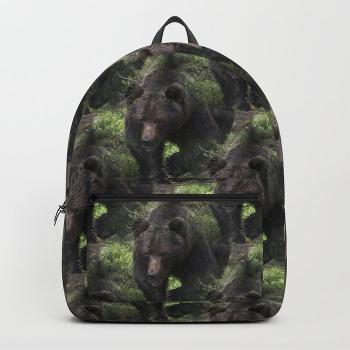 King of forest, male brown bear approaching Rucksack