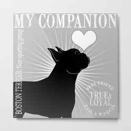 BOSTON TERRIER – My Companion - Grey Metal Print
