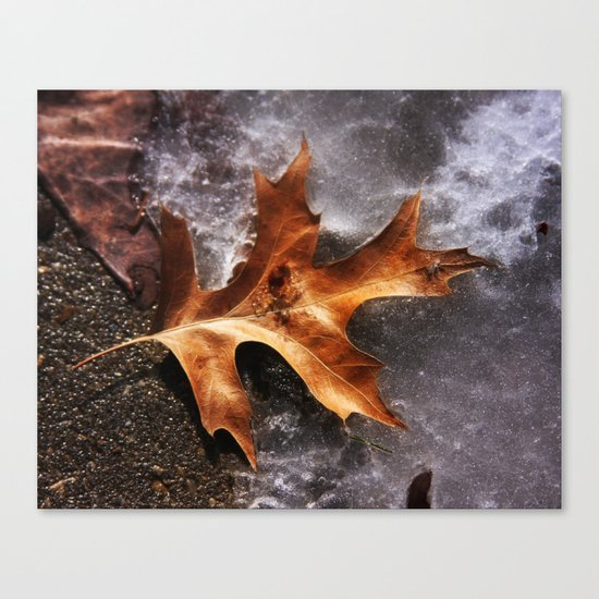 February Thaw Canvas Print