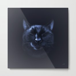 The Classic Bear in High Gloss Metal Print
