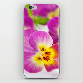 Magenta pansy iPhone Skin