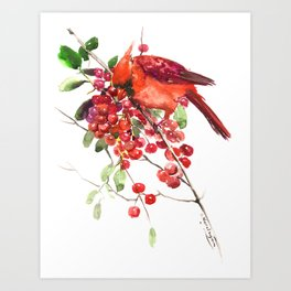 Cardinal Bird and Berries, red green Christmas colors artwork design Cardinal lover Art Print