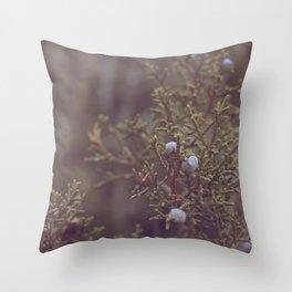 Colorado Desert Life II Throw Pillow