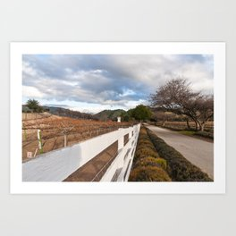 Carmel Valley Winery Art Print