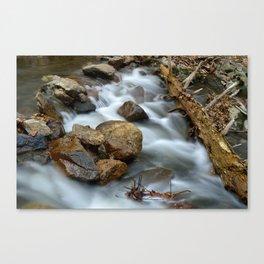 Long Exposure Appalachian Trail Canvas Print
