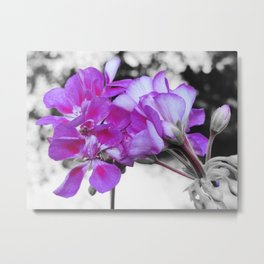fuchsia flOWERS Pop of Color Metal Print