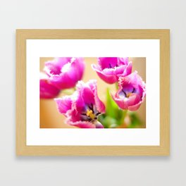 Tulip flowers Framed Art Print