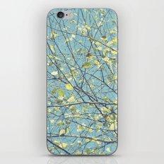 1542 iPhone & iPod Skin