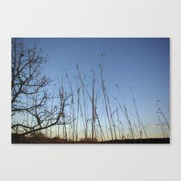 Prairie Twilight Canvas Print