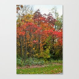 First Things First Canvas Print