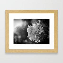 Noir Garden Framed Art Print