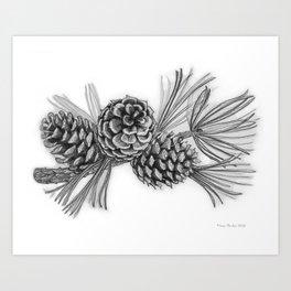 Pitch Pine Art Print