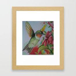 Little Tropical Hummingbirdy Framed Art Print